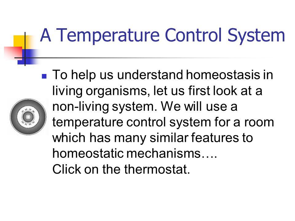 A Temperature Control System