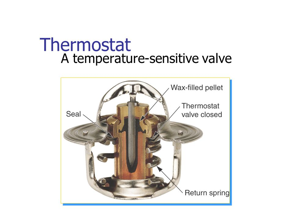 A temperature-sensitive valve
