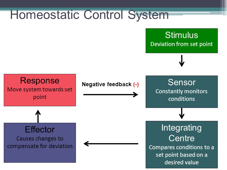 Homeostatic Control System
