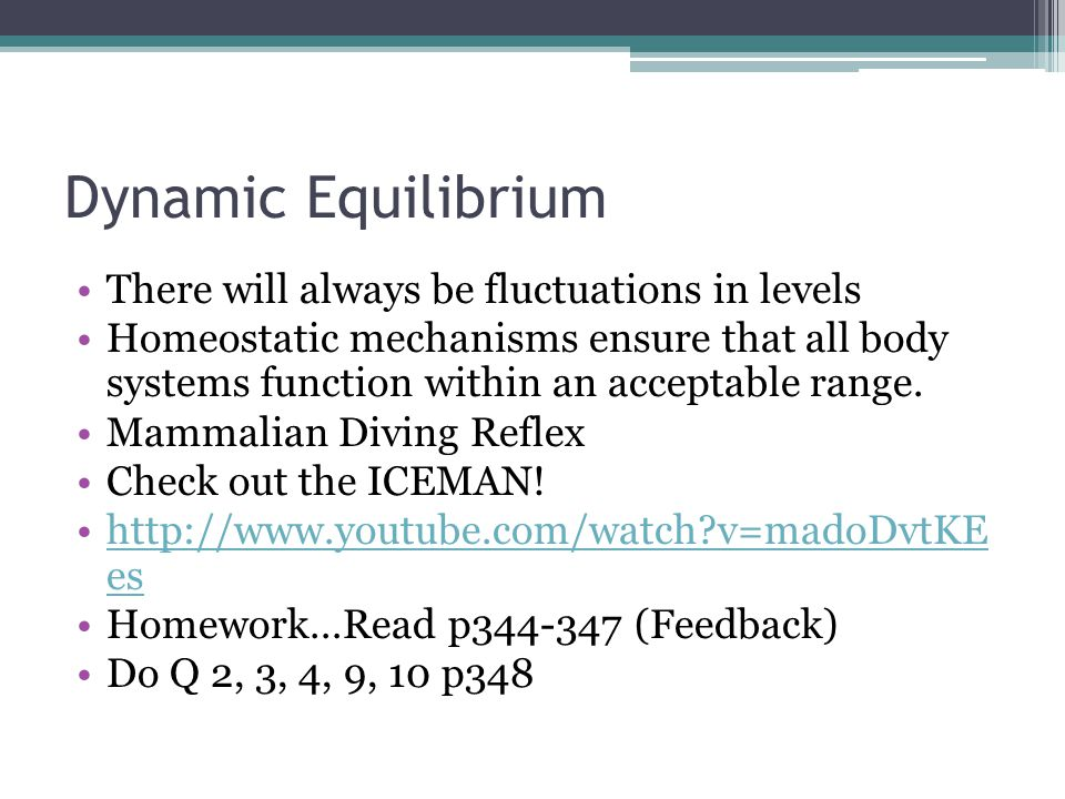 Dynamic Equilibrium There will always be fluctuations in levels