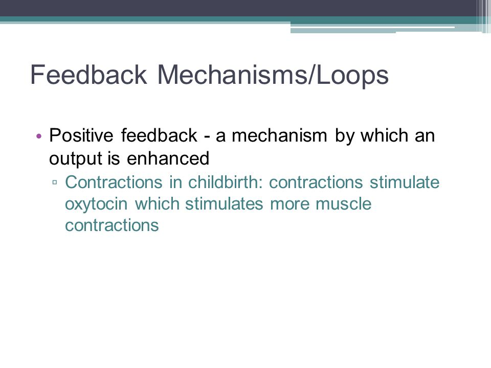 Feedback Mechanisms/Loops