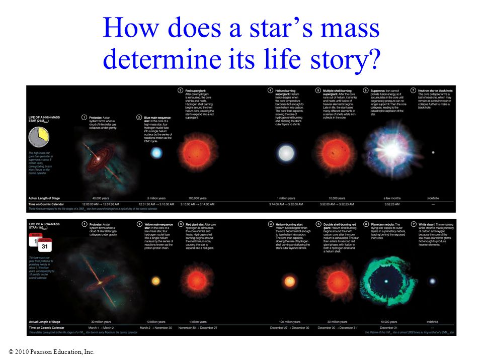 How does a star's mass determine its life story