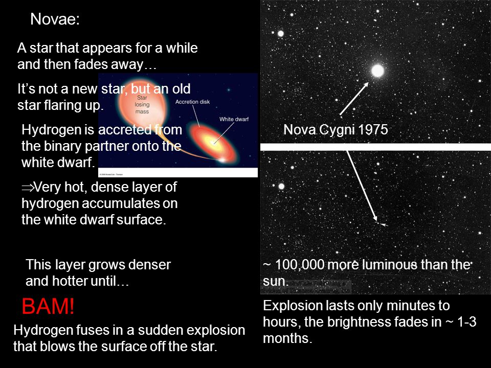 BAM! Novae: A star that appears for a while and then fades away…