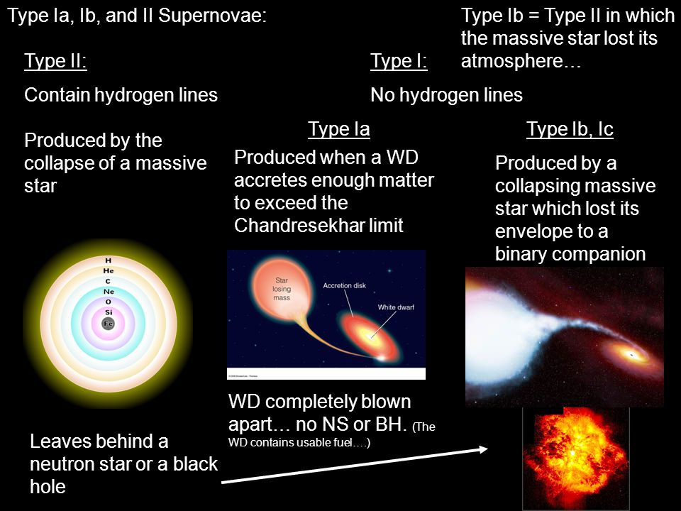 Type Ia, Ib, and II Supernovae: