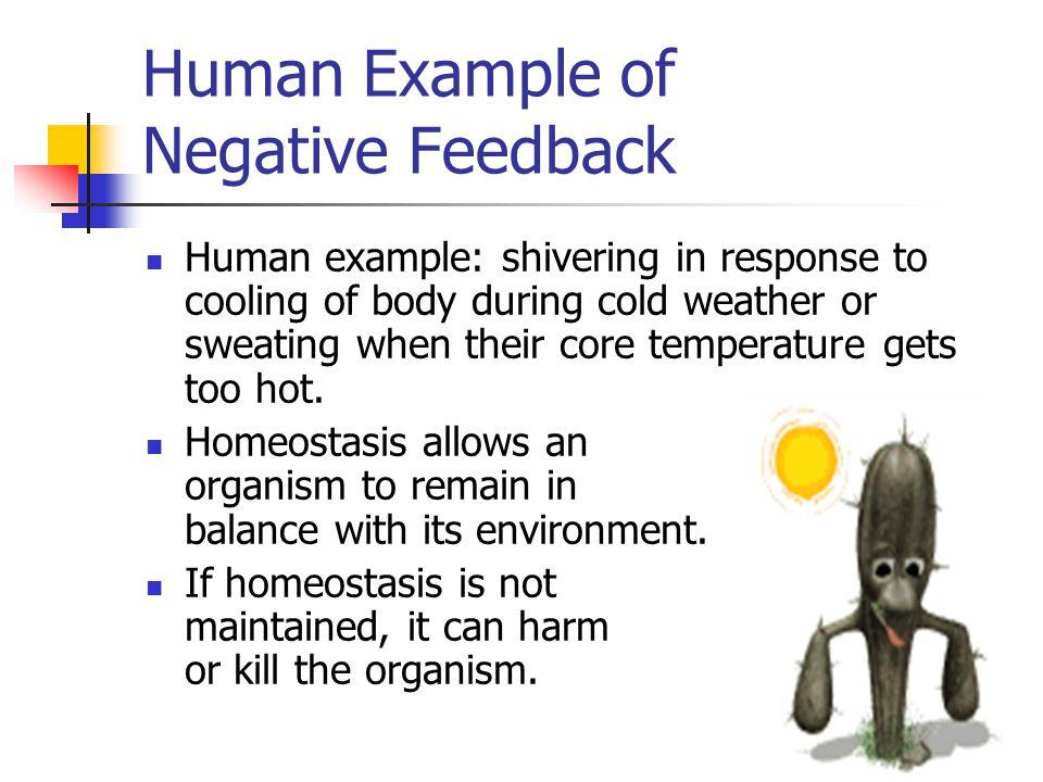 Human Example of Negative Feedback