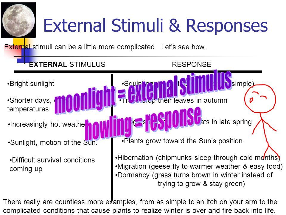 External Stimuli & Responses