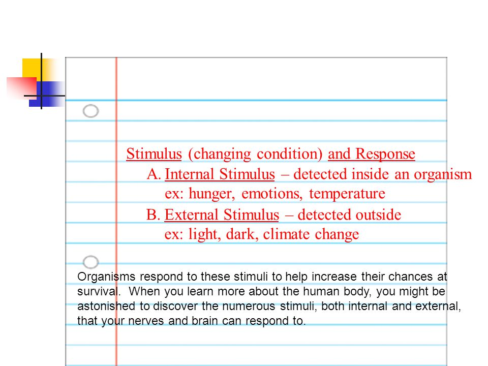 #22 Write. Stimulus (changing condition) and Response