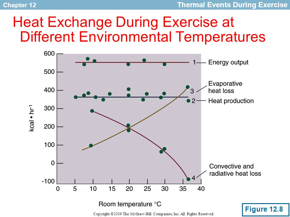 Heat Exchange During Exercise at Different Environmental Temperatures
