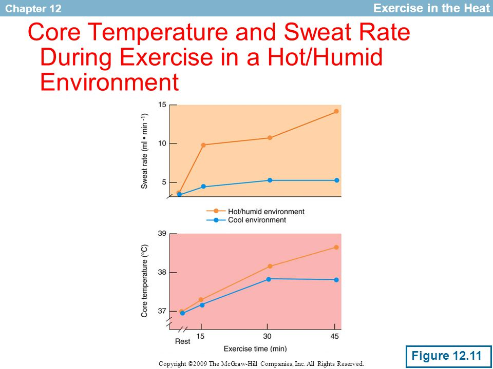 Exercise in the Heat Core Temperature and Sweat Rate During Exercise in a Hot/Humid Environment.