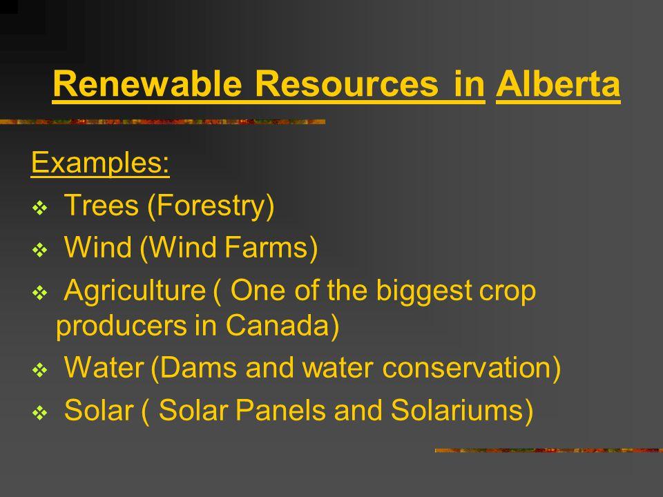 Renewable Resources in Alberta