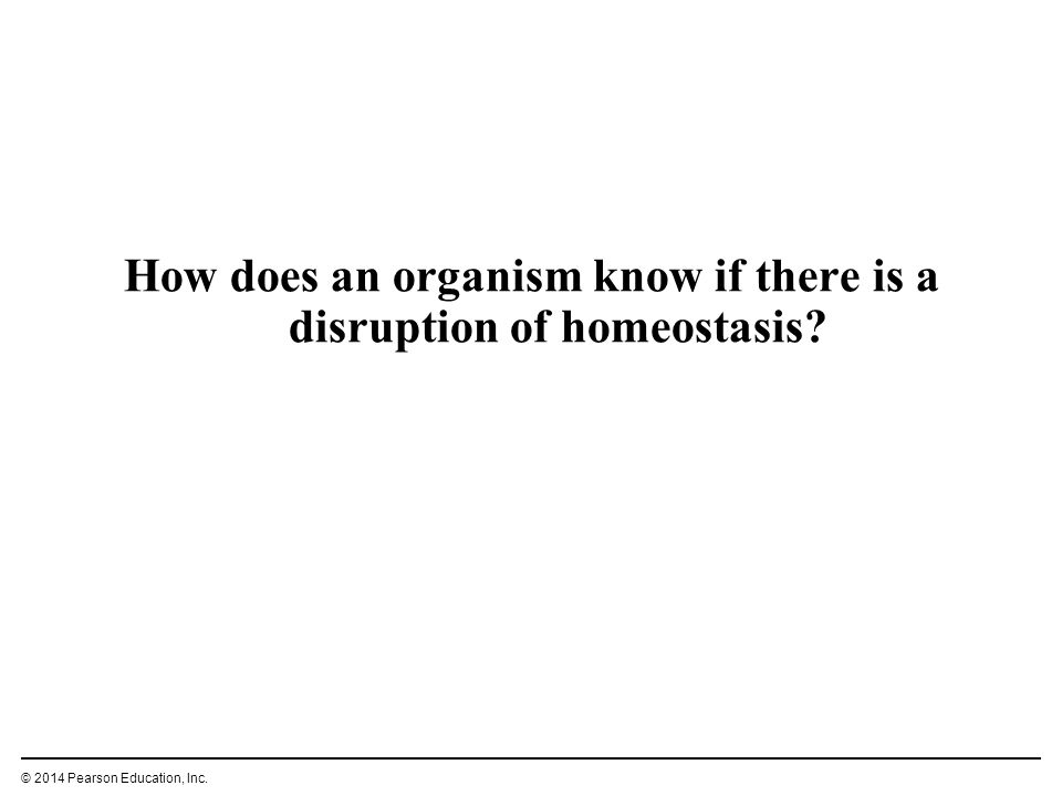 How does an organism know if there is a disruption of homeostasis