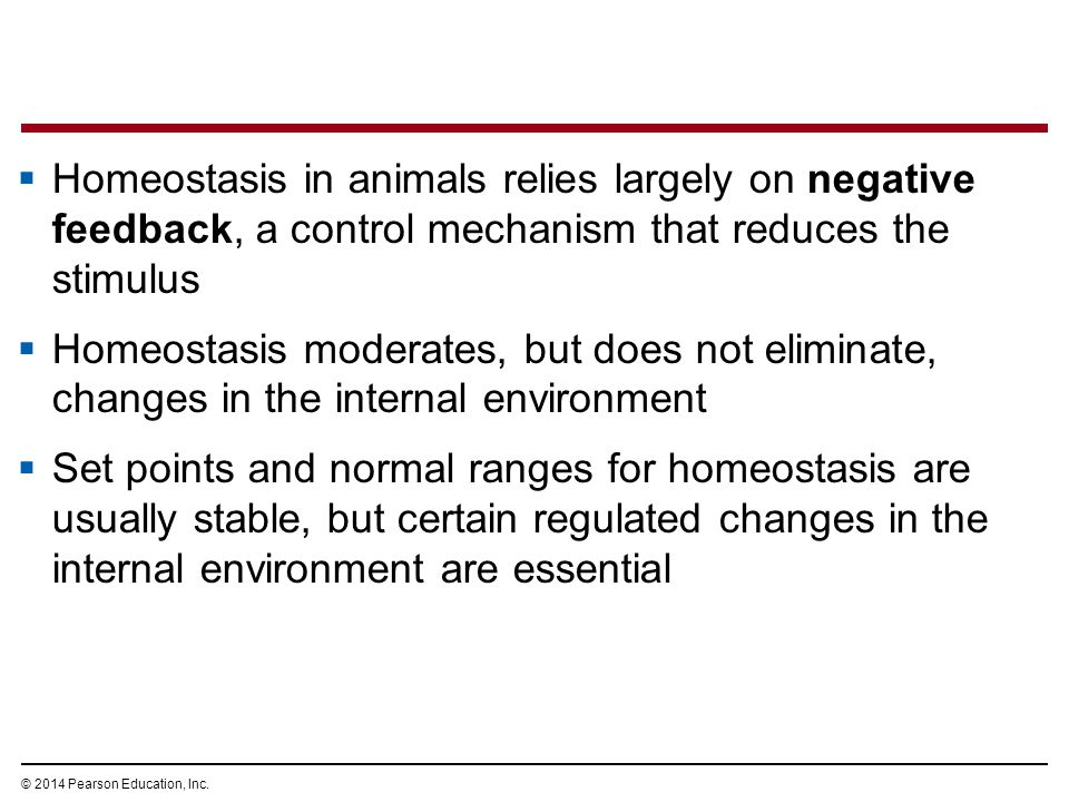 Homeostasis in animals relies largely on negative feedback, a control mechanism that reduces the stimulus