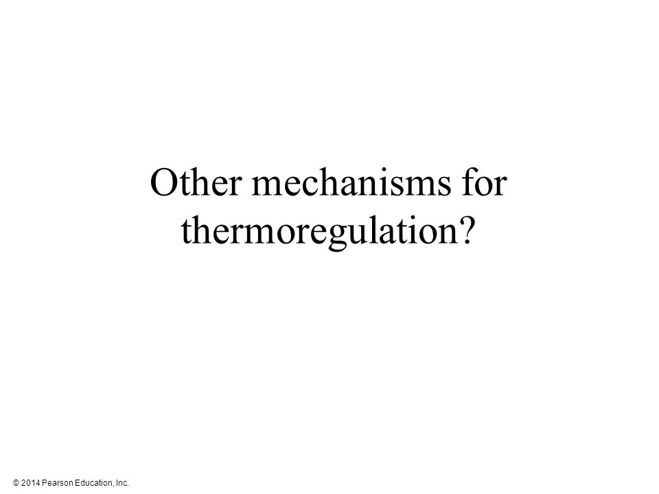 Other mechanisms for thermoregulation