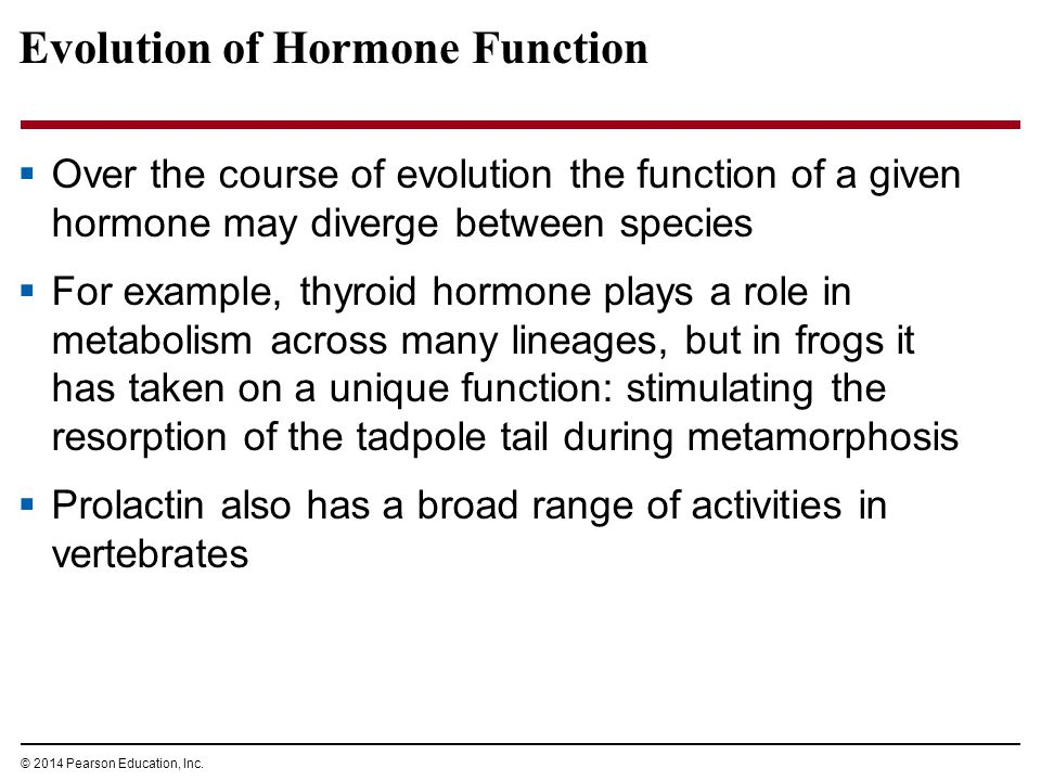 Evolution of Hormone Function