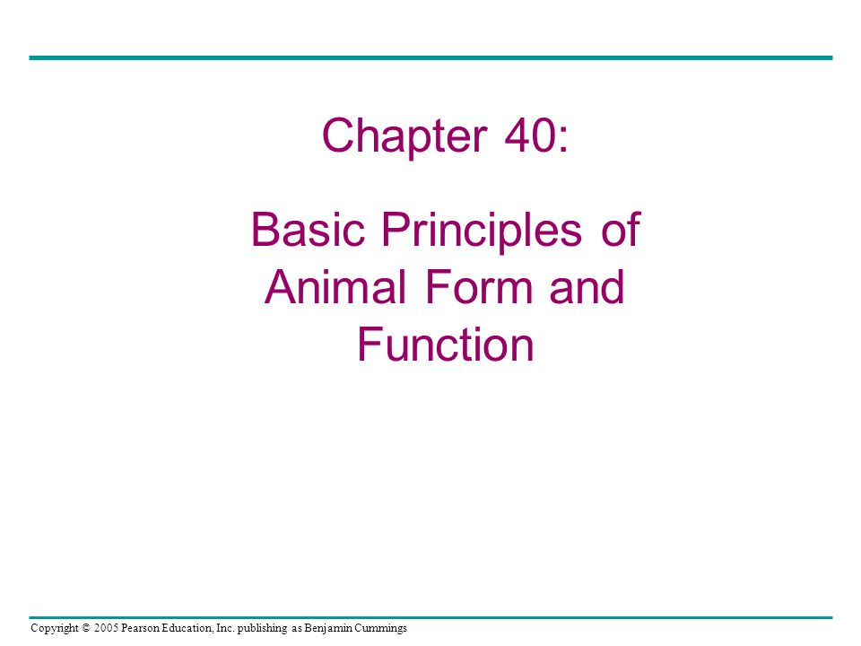 Basic Principles of Animal Form and Function
