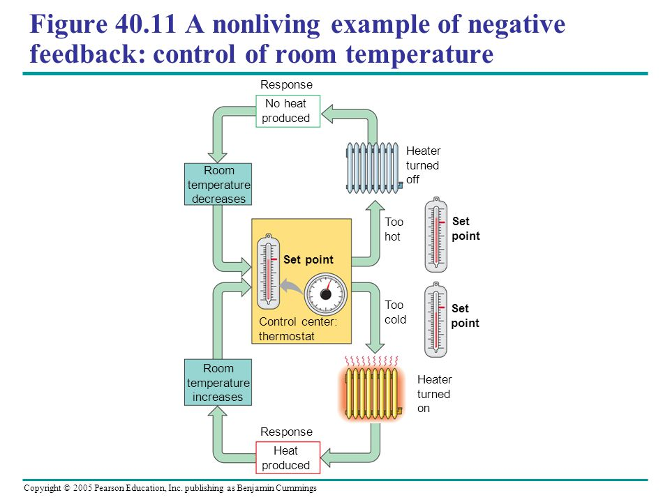 Figure 40.11 A nonliving example of negative feedback: control of room temperature