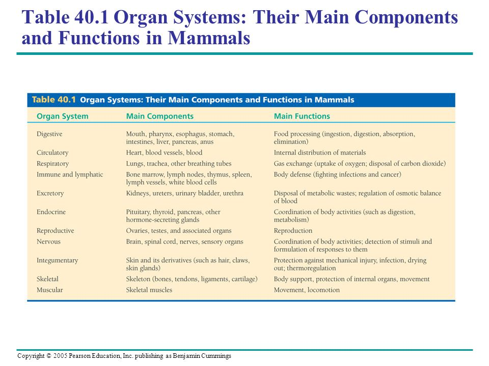Table 40.1 Organ Systems: Their Main Components and Functions in Mammals