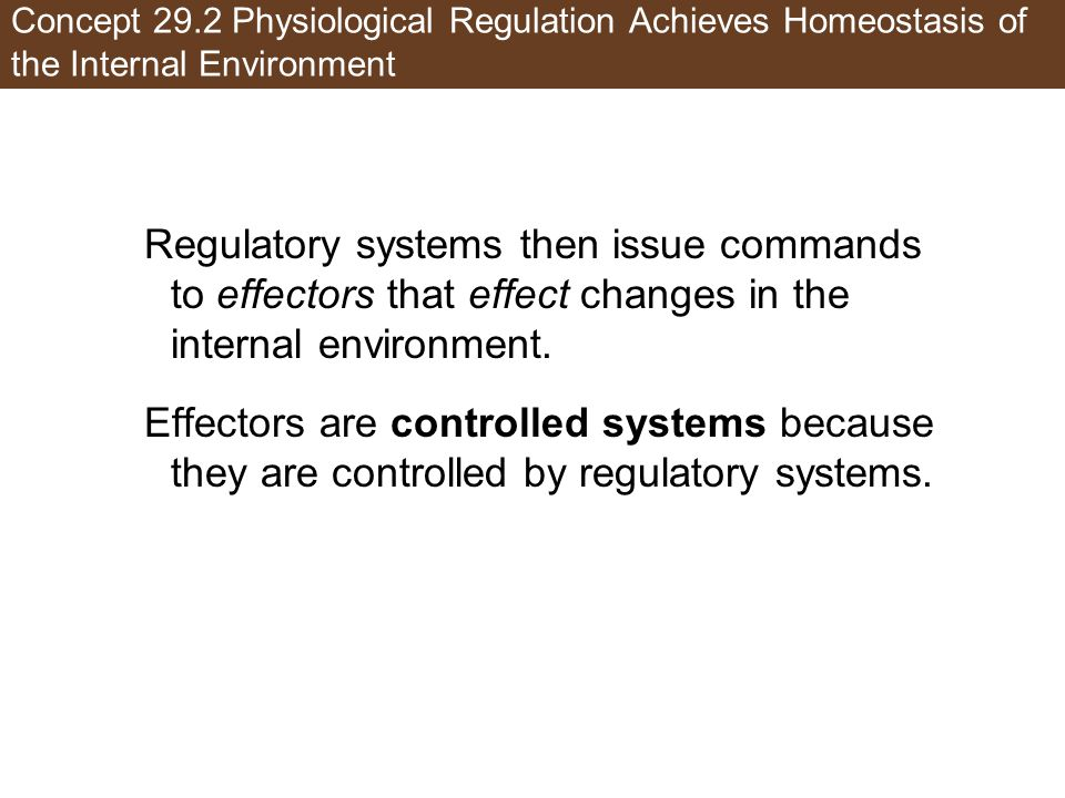 Concept 29.2 Physiological Regulation Achieves Homeostasis of the Internal Environment