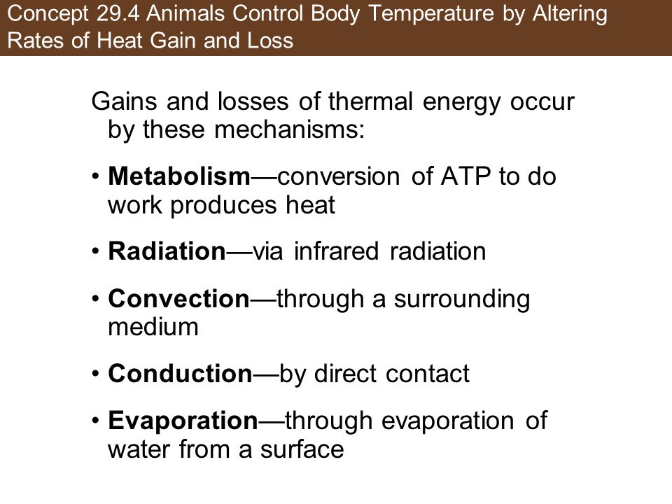Gains and losses of thermal energy occur by these mechanisms: