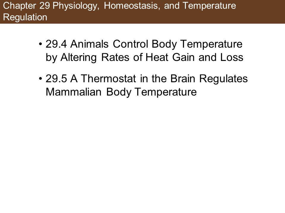 Chapter 29 Physiology, Homeostasis, and Temperature Regulation
