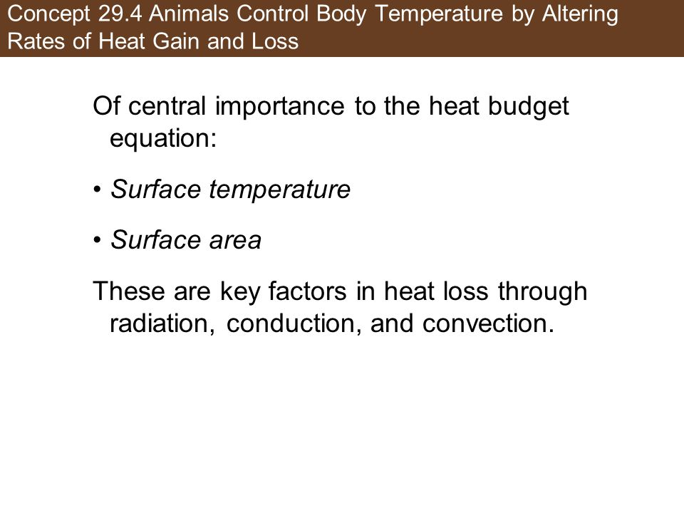 Of central importance to the heat budget equation: Surface temperature