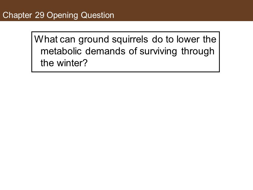 Chapter 29 Opening Question