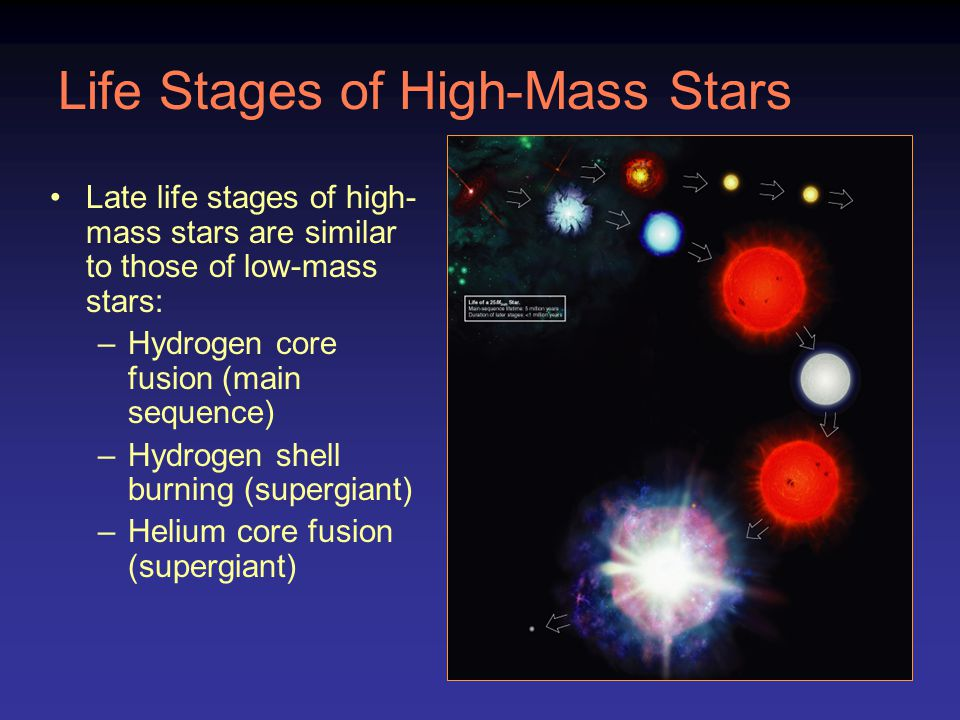 Life Stages of High-Mass Stars