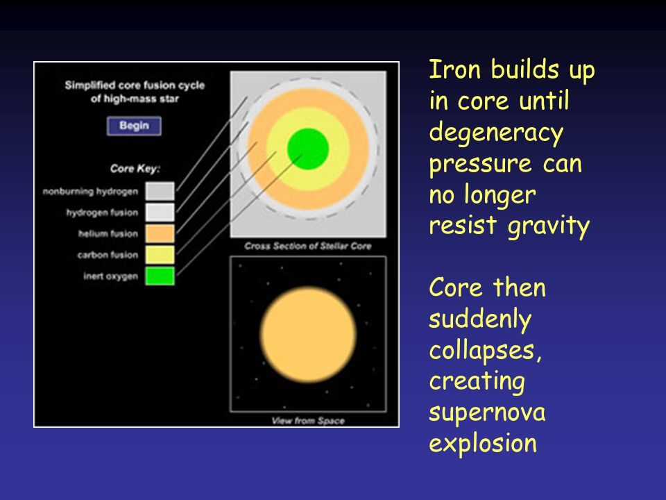 Core then suddenly collapses, creating supernova explosion