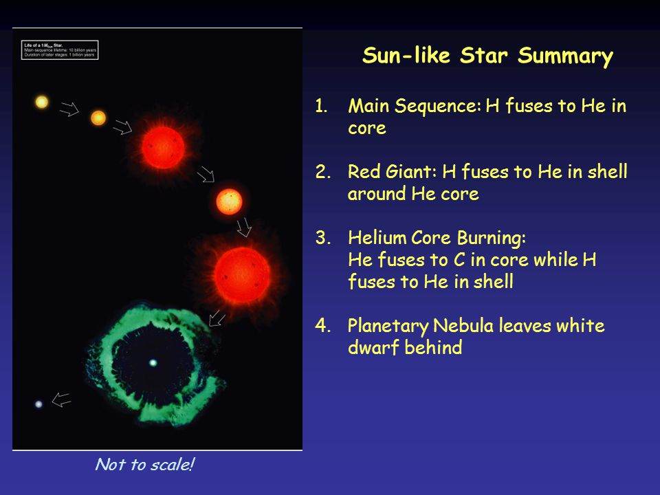 Sun-like Star Summary Main Sequence: H fuses to He in core