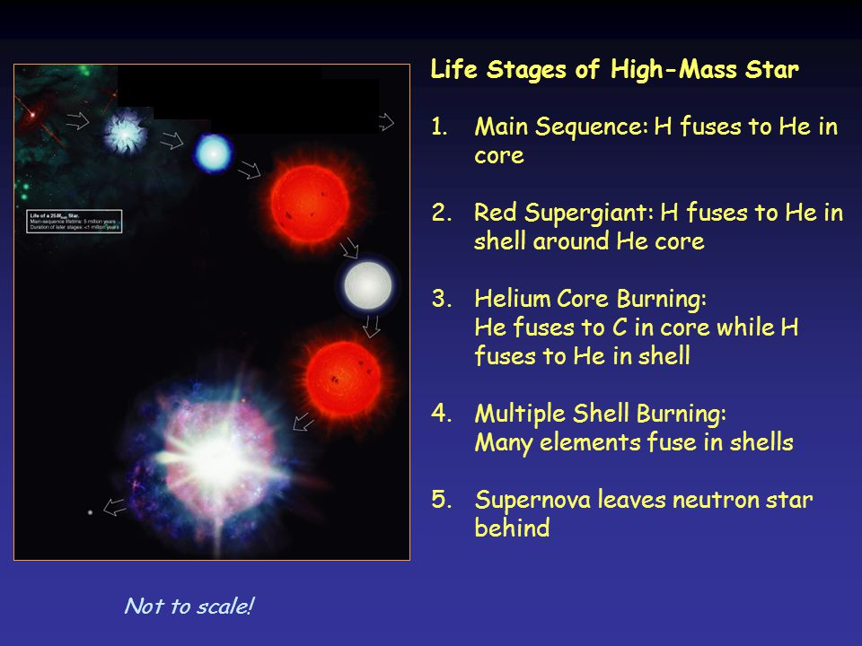 Life Stages of High-Mass Star Main Sequence: H fuses to He in core