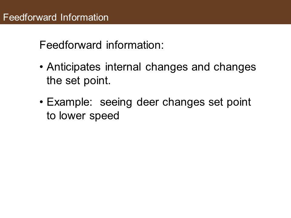 Feedforward Information