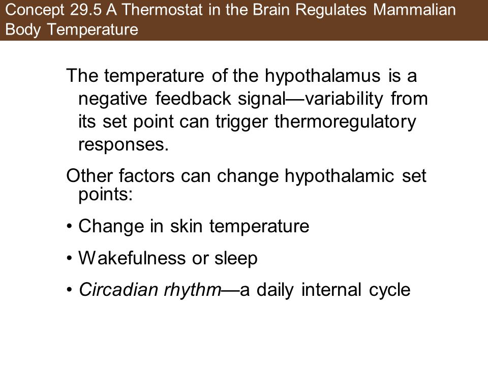 Other factors can change hypothalamic set points: