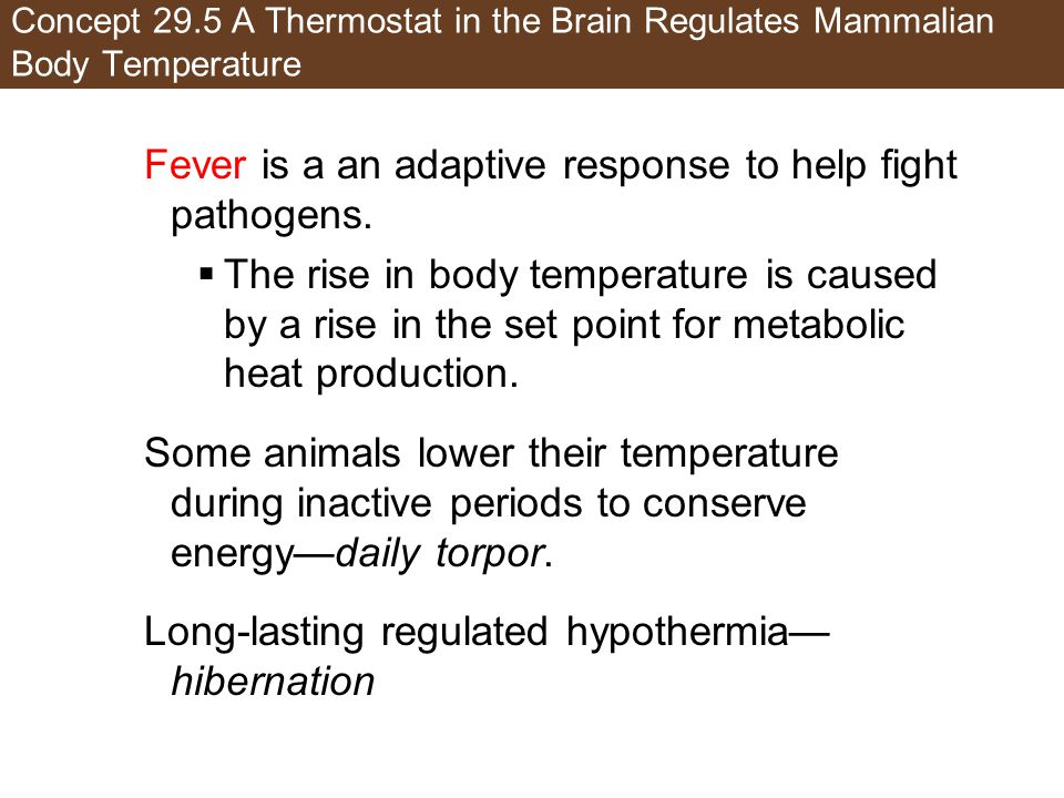 Fever is a an adaptive response to help fight pathogens.