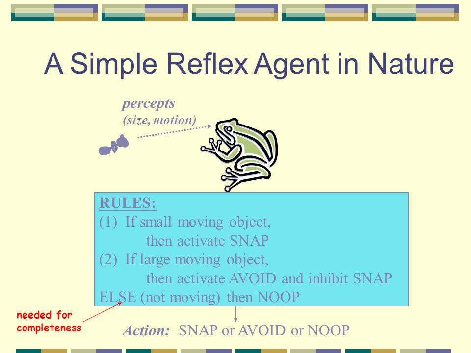 A Simple Reflex Agent in Nature