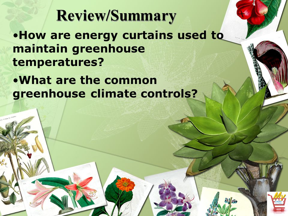 Review/Summary How are energy curtains used to maintain greenhouse