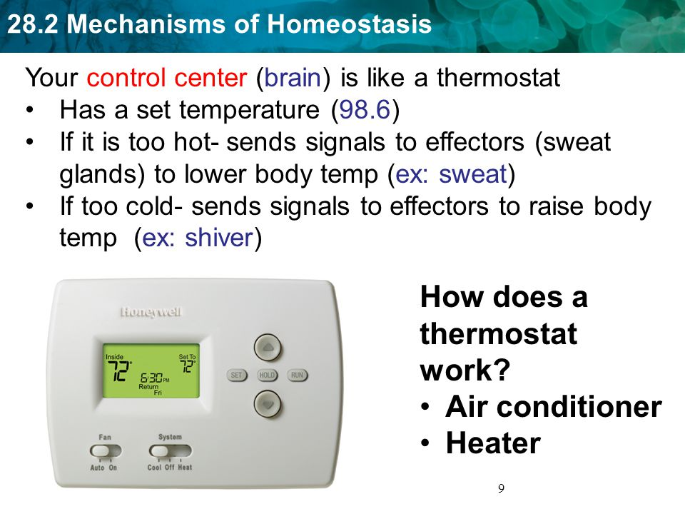 How does a thermostat work
