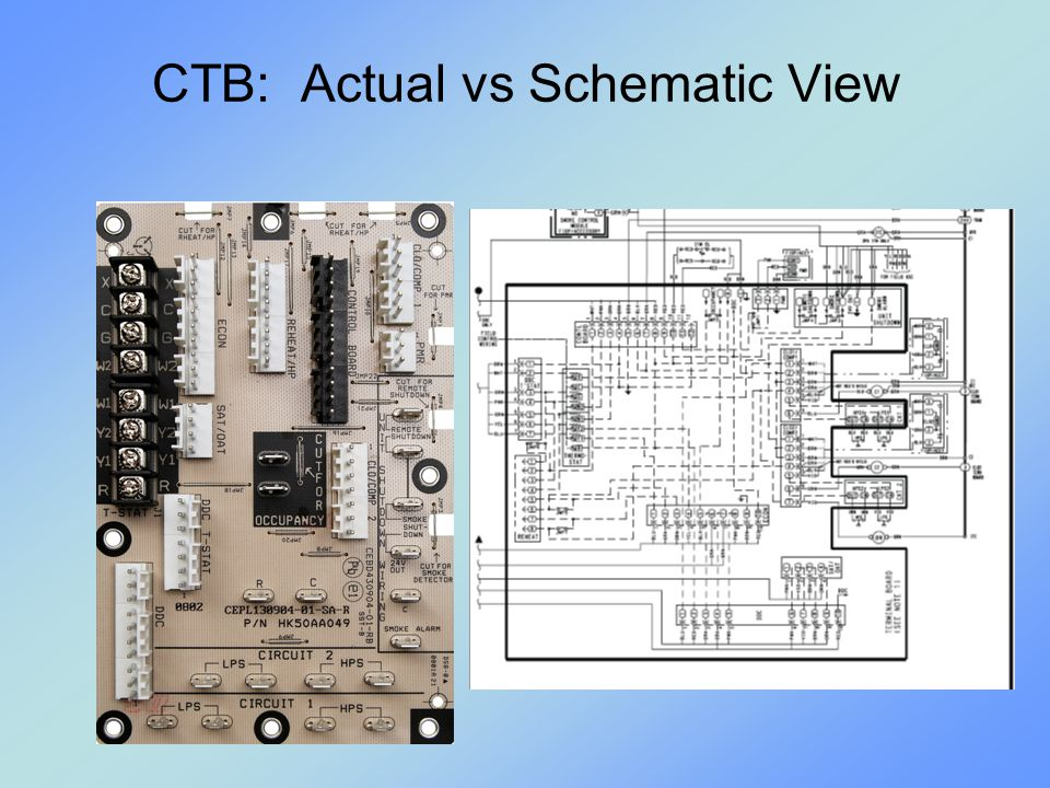CTB: Actual vs Schematic View