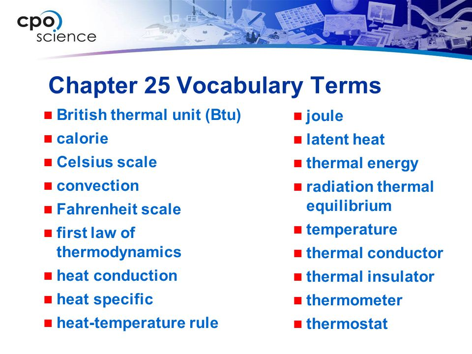 Chapter 25 Vocabulary Terms