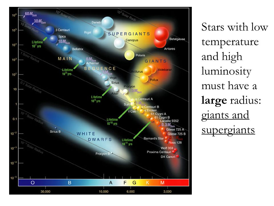 SUPERGIANTS Stars with low temperature and high luminosity must have a large radius: giants and supergiants.