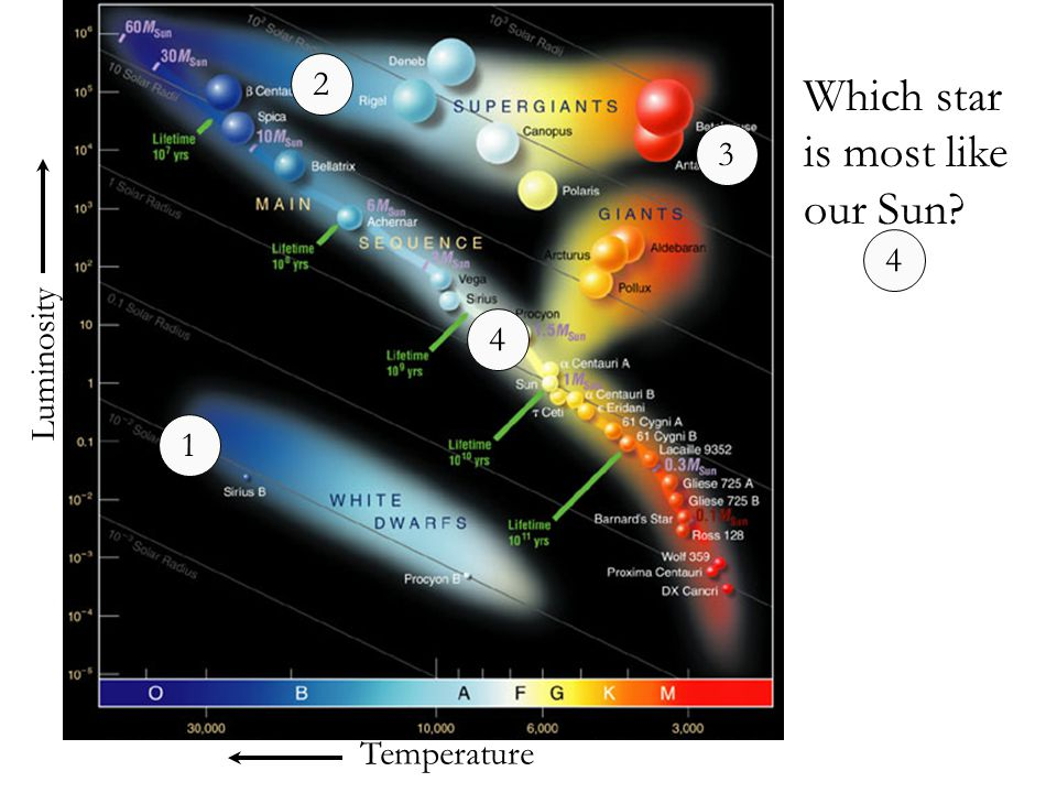 Which star is most like our Sun