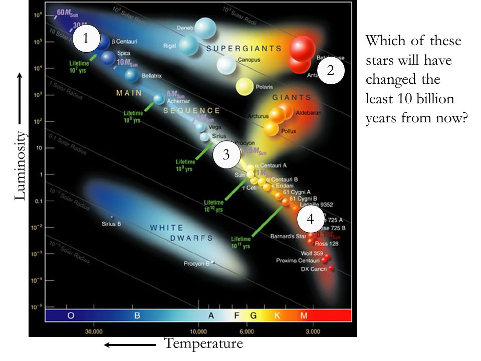 1 Which of these stars will have changed the least 10 billion years from now 2. 3. Luminosity. 4.