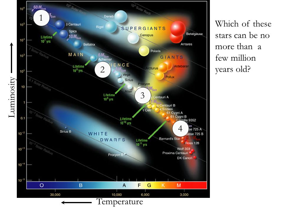 1 Which of these stars can be no more than a few million years old 2 Luminosity 3 4 Temperature
