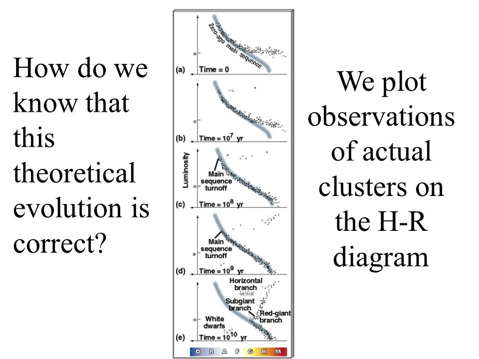 How do we know that this theoretical evolution is correct