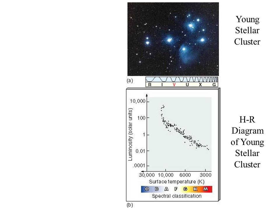 H-R Diagram of Young Stellar Cluster