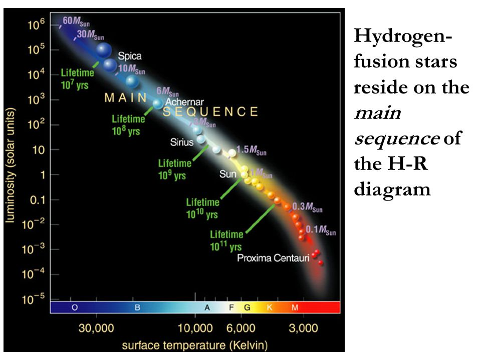 Hydrogen-fusion stars reside on the main sequence of the H-R diagram