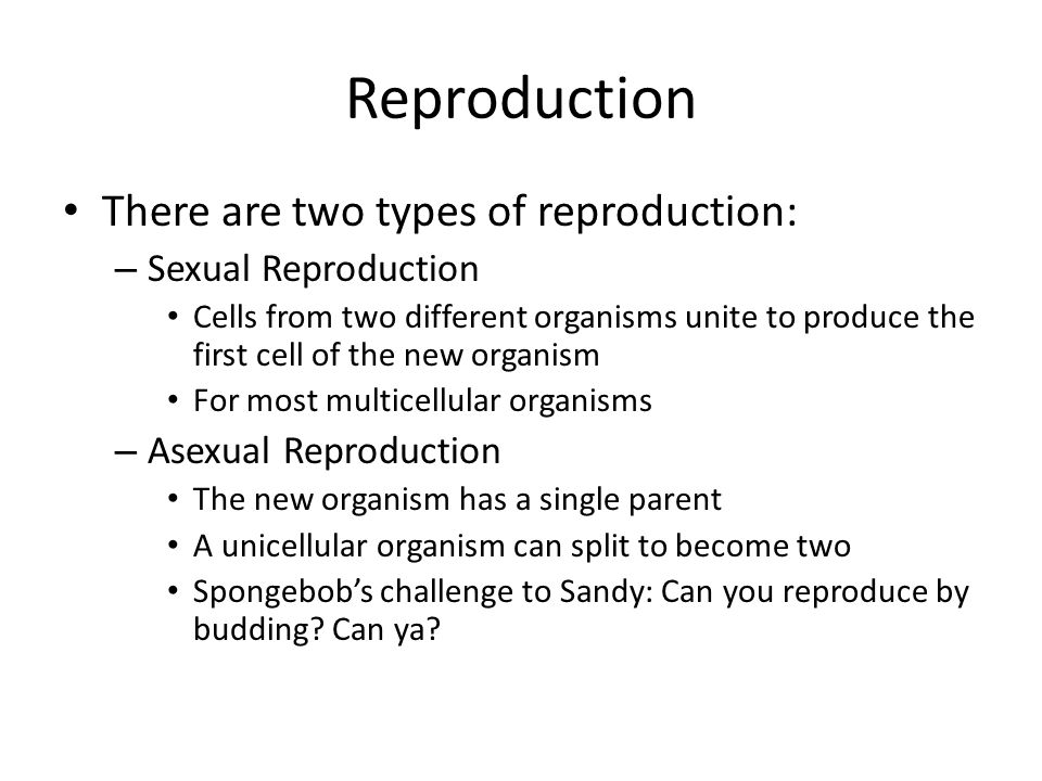 Reproduction There are two types of reproduction: Sexual Reproduction