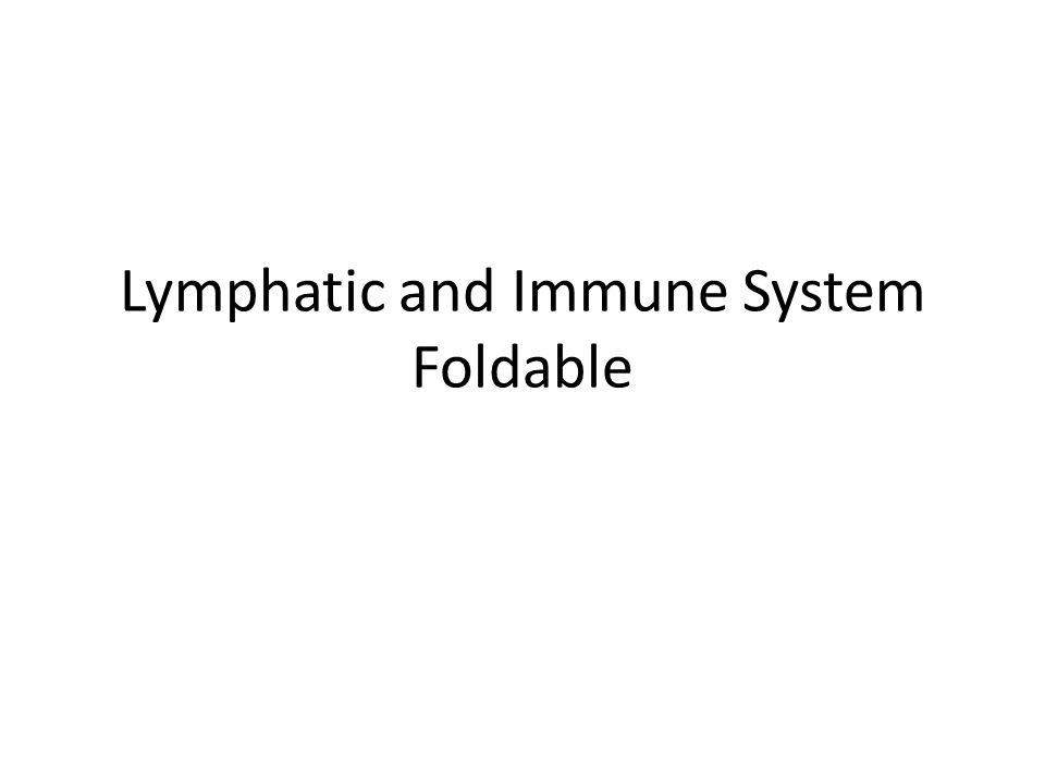 Lymphatic and Immune System Foldable