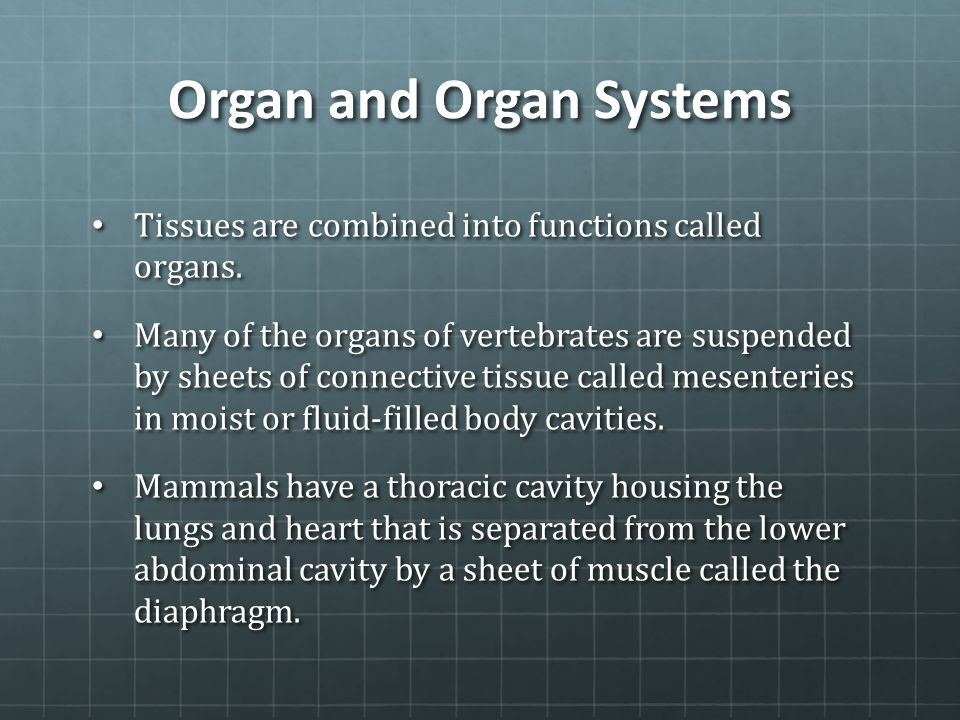 Organ and Organ Systems