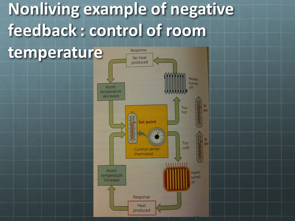 Nonliving example of negative feedback : control of room temperature