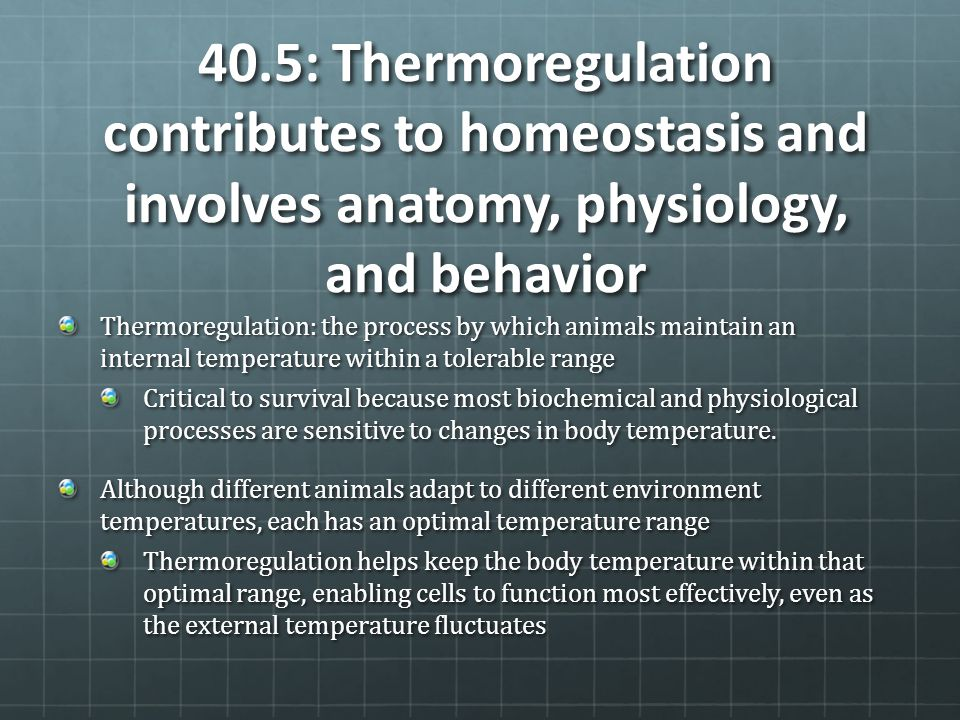 40.5: Thermoregulation contributes to homeostasis and involves anatomy, physiology, and behavior